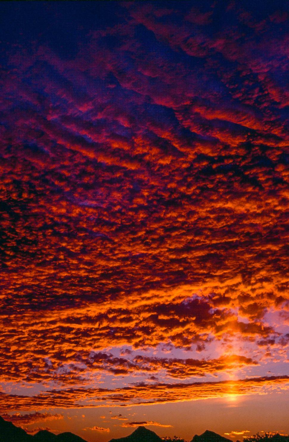 Download Free Stock Photo of Golden Clouds during sunset