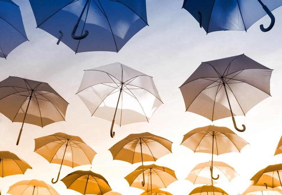 Download Free Stock HD Photo of Colorful Umbrellas Hanging in the Air Online