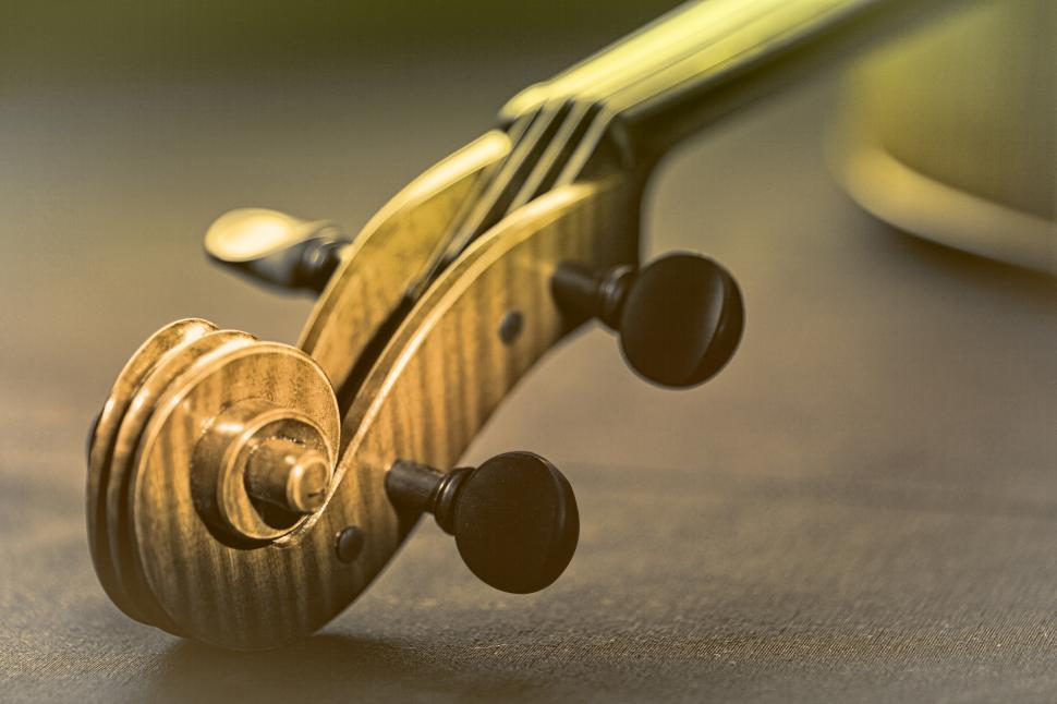 Download Free Stock HD Photo of Violin - Scroll and Pegbox Close-Up - Retro Looks Online