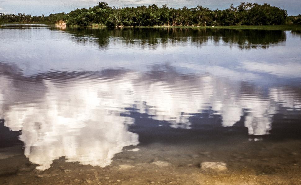 Download Free Stock Photo of Nine Mile Pond