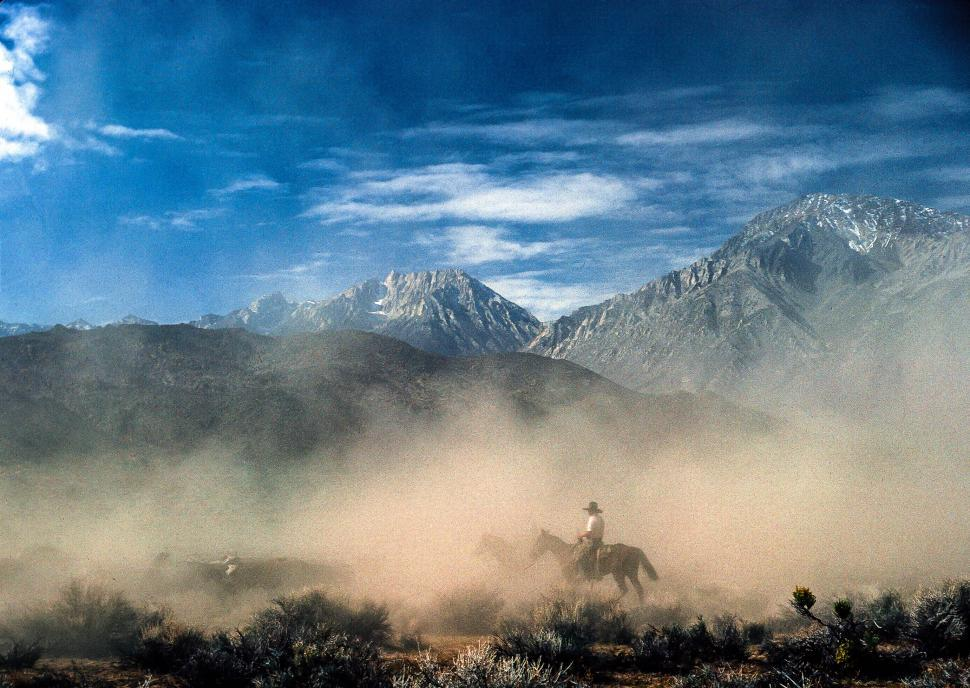Download Free Stock HD Photo of Cowboy riding horse in a dusty arena Online