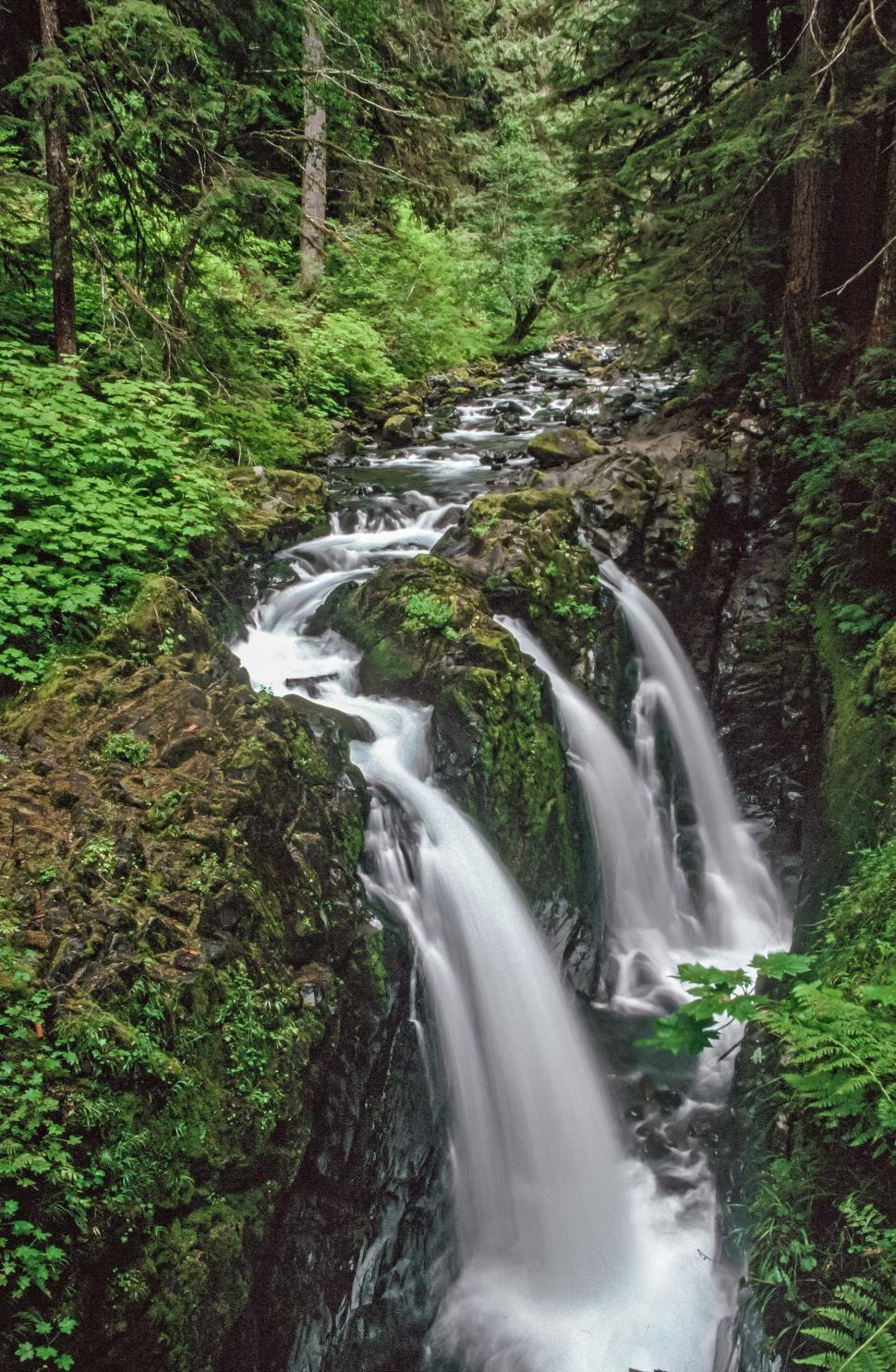 Download Free Stock HD Photo of Water flowing down Sol Duc Falls Online