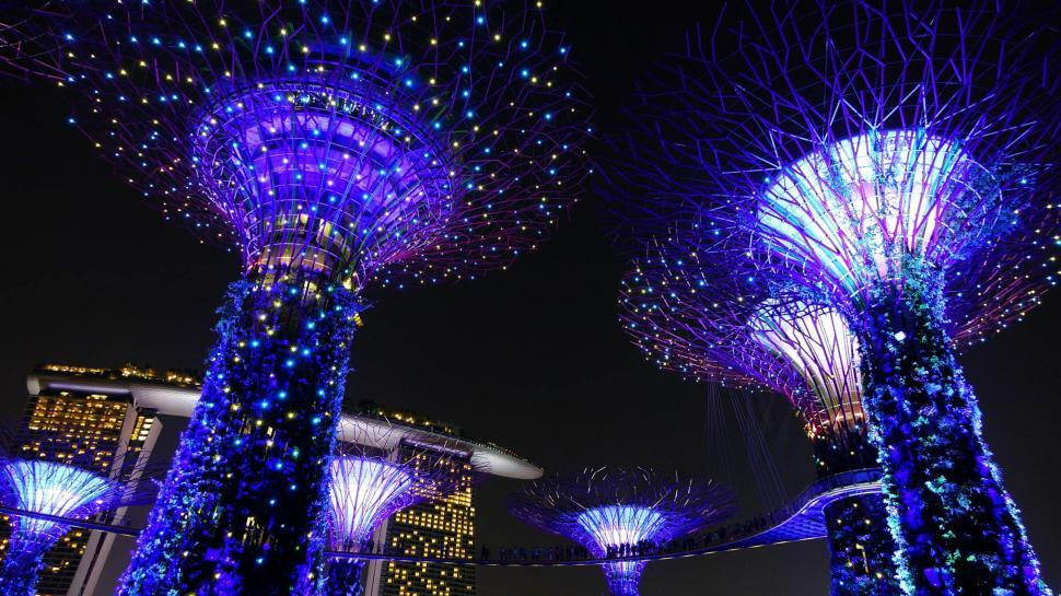 Download Free Stock Photo of Garden by the Bay Light Display
