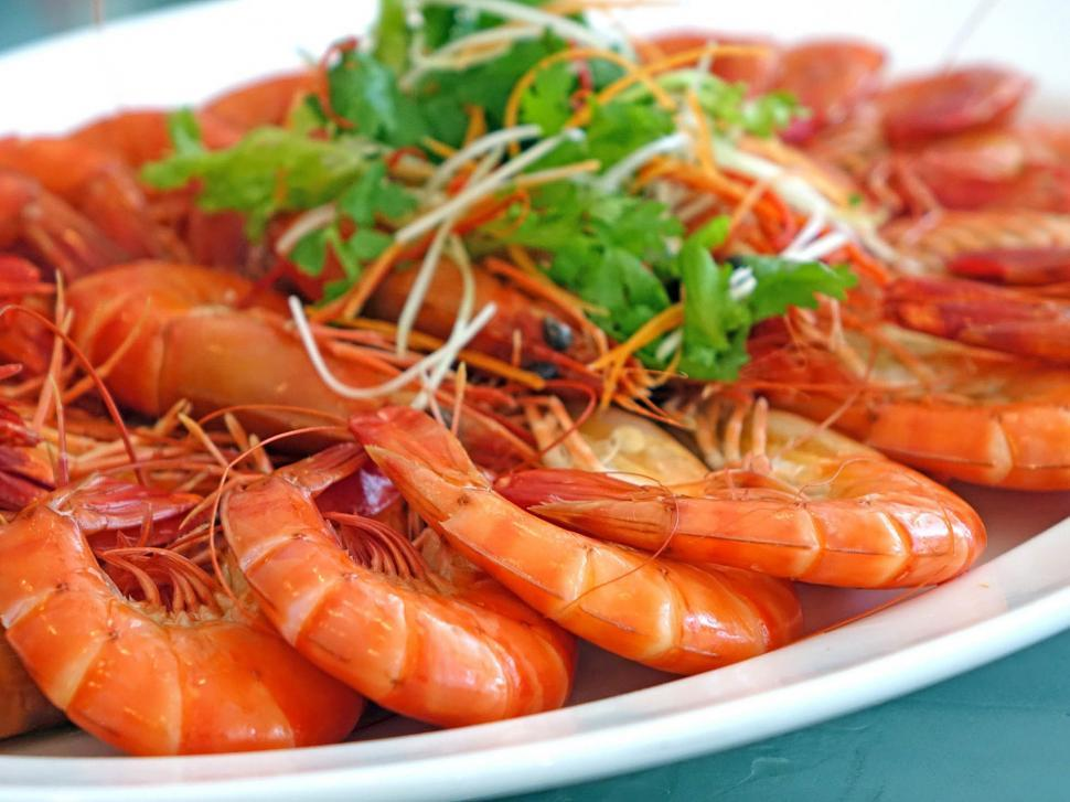 Download Free Stock Photo of Plate of Prawns