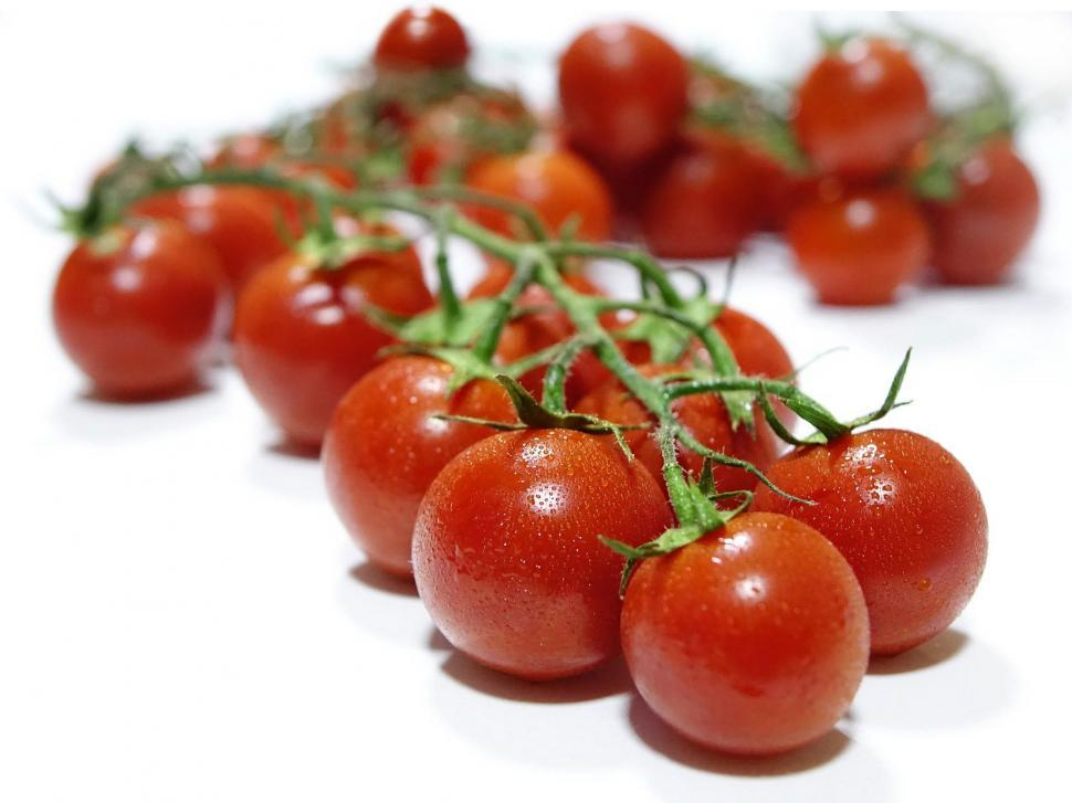 Download Free Stock HD Photo of Fresh Tomatoes Online