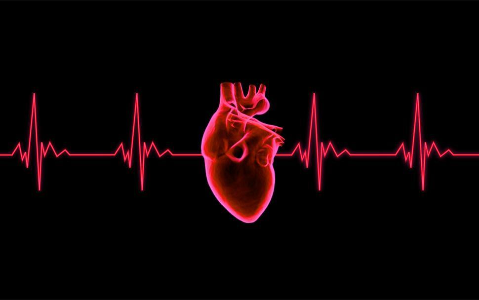 Download Free Stock HD Photo of Beating Heart - ECG Graph Online