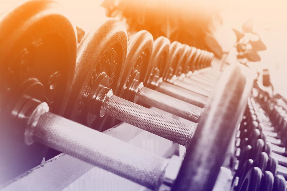 Download Free Stock HD Photo of Dumbbells in a Row - Fitness Concept Online