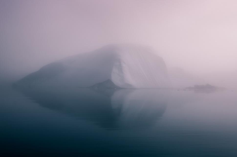 Download Free Stock Photo of dugong sea cow aquatic mammal sky water sun