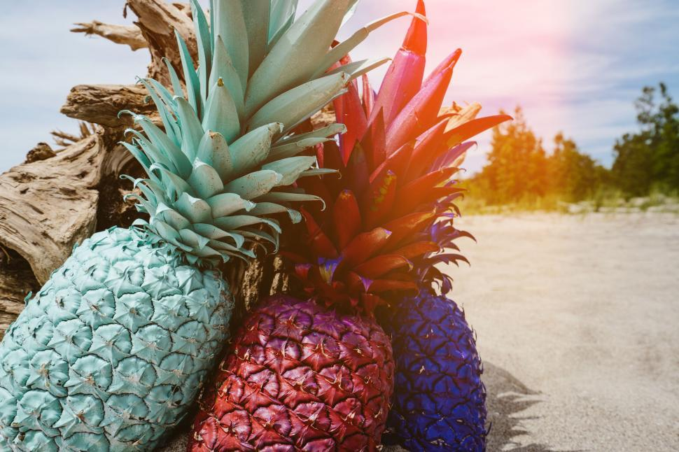 Download Free Stock Photo of Nature pineapple edible fruit fruit produce food