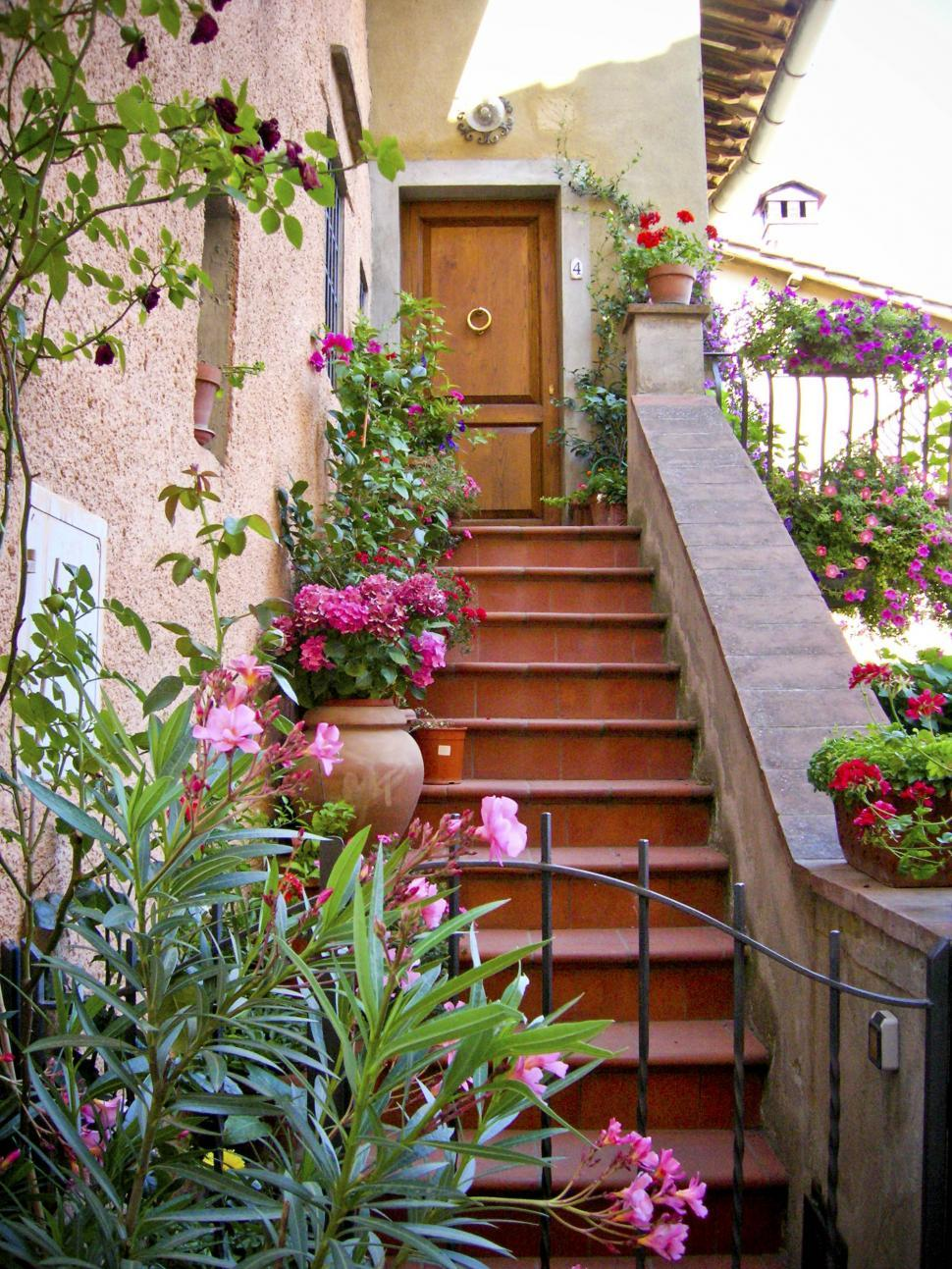 Download Free Stock Photo of flowers on stairs